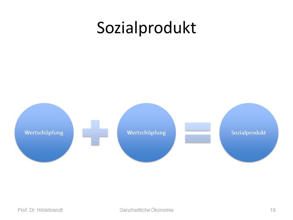 Sozialprodukt Prof. Dr. HildebrandtGanzheitliche Ökonomie19