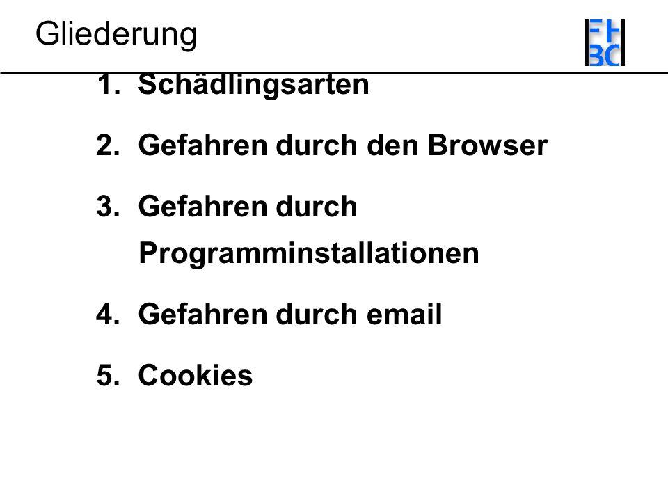 Gliederung 1. Schädlingsarten 2. Gefahren durch den Browser 3.
