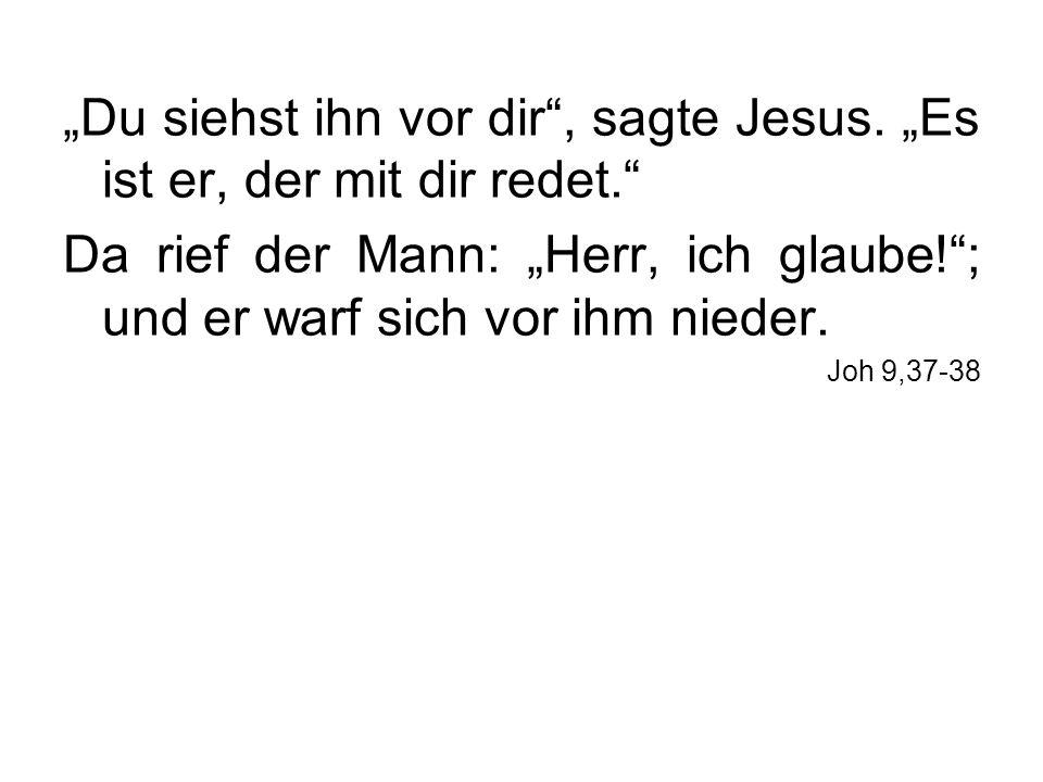Du siehst ihn vor dir, sagte Jesus. Es ist er, der mit dir redet. Da rief der Mann: Herr, ich glaube!; und er warf sich vor ihm nieder. Joh 9,37-38