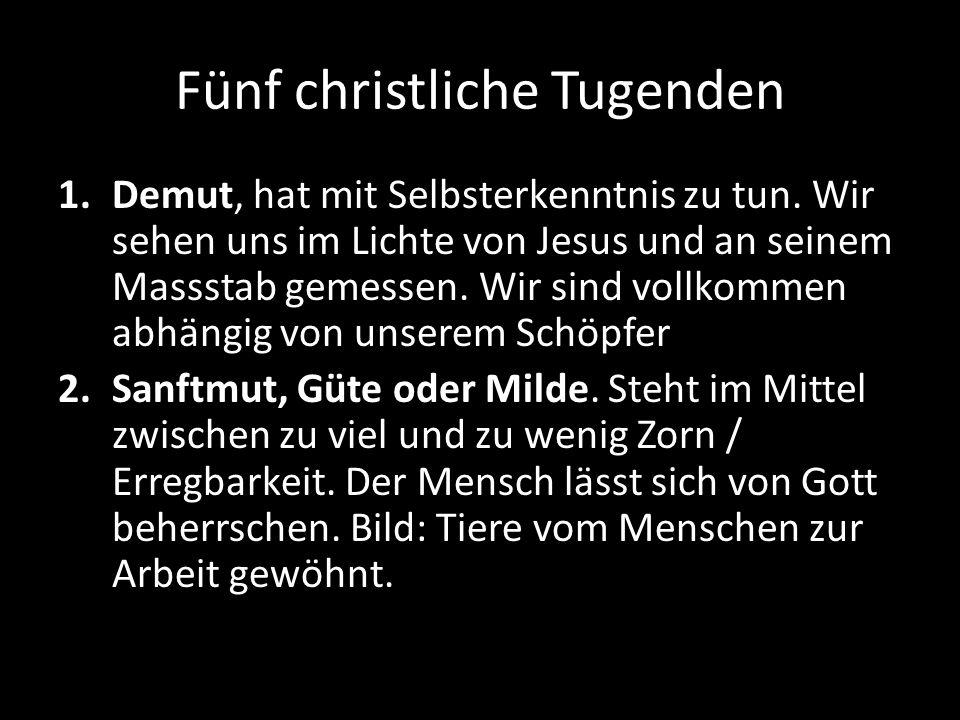 Fünf christliche Tugenden 3.Geduld, Langmut, Grossmut.