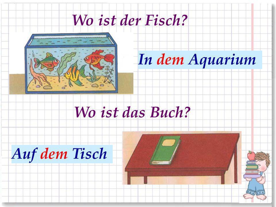 В аквариуме На столе Wo ist der Fisch? Wo ist das Buch? Auf dem Tisch In dem Aquarium