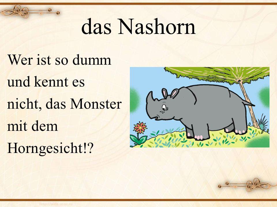 das Nashorn Wer ist so dumm und kennt es nicht, das Monster mit dem Horngesicht!?