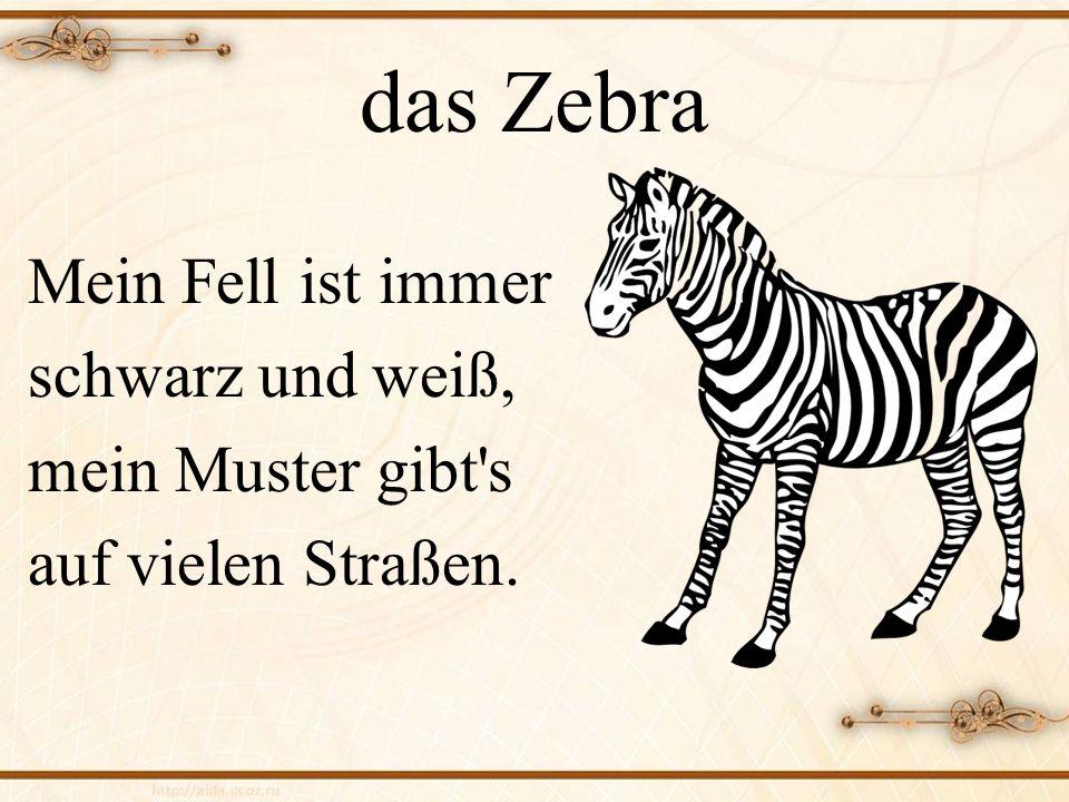 das Zebra Mein Fell ist immer schwarz und weiß, mein Muster gibt's auf vielen Straßen.