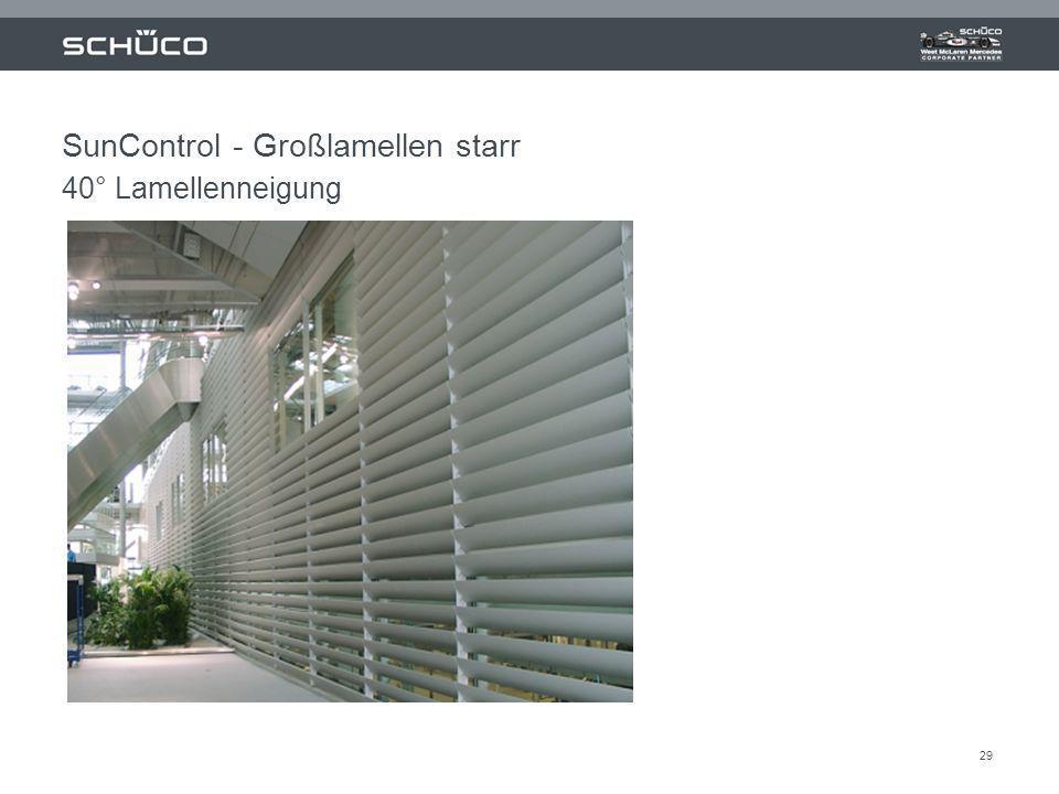 29 SunControl - Großlamellen starr 40° Lamellenneigung