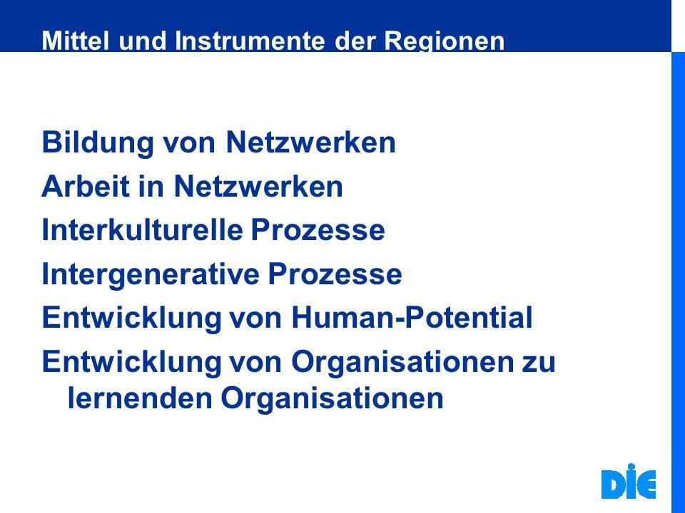 Mittel und Instrumente der Regionen Bildung von Netzwerken Arbeit in Netzwerken Interkulturelle Prozesse Intergenerative Prozesse Entwicklung von Huma
