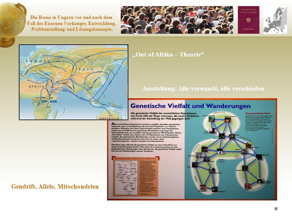 66 Epigenetische Regeln versus Rassismus Die Roma in Ungarn vor und nach dem Fall des Eisernen Vorhanges. Entwicklung, Problemstellung und Lösungskonz