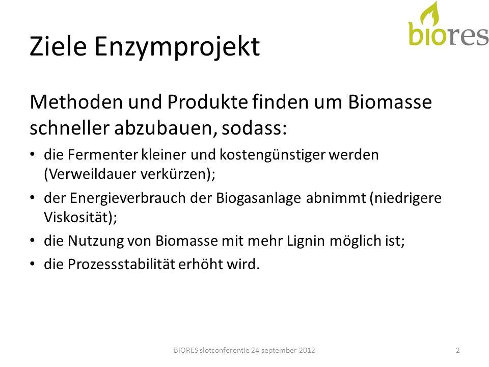 Schlussfolgerungen & Analyse BIORES slotconferentie 24 september 201223 Enzymversuche im Kleinmaßstab zeigt wenig Erfolgschancen Interferenzen mit Biogaskultur (Inoculum) schwierig nachzuweisen Womöglich ist eine bestimmte Adaptionszeit für die Biogaskultur notwendig Unabhängige Forschung und Demo in der Praxis ist unerlässlich
