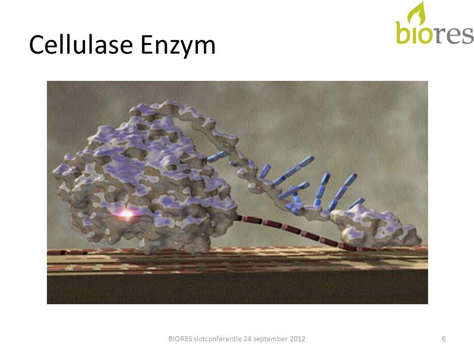 Enzymatische Zersetzung Papier 7BIORES slotconferentie 24 september 2012
