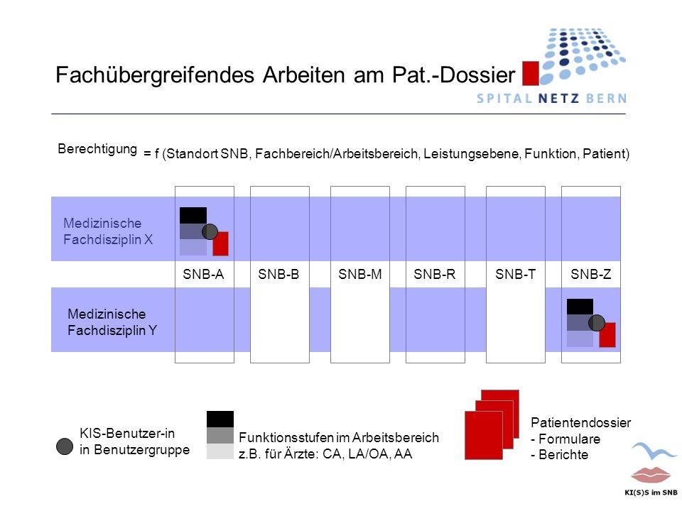 SNB-RSNB-ZSNB-TSNB-A Fachübergreifendes Arbeiten am Pat.-Dossier Funktionsstufen im Arbeitsbereich z.B. für Ärzte: CA, LA/OA, AA SNB-M Patientendossie