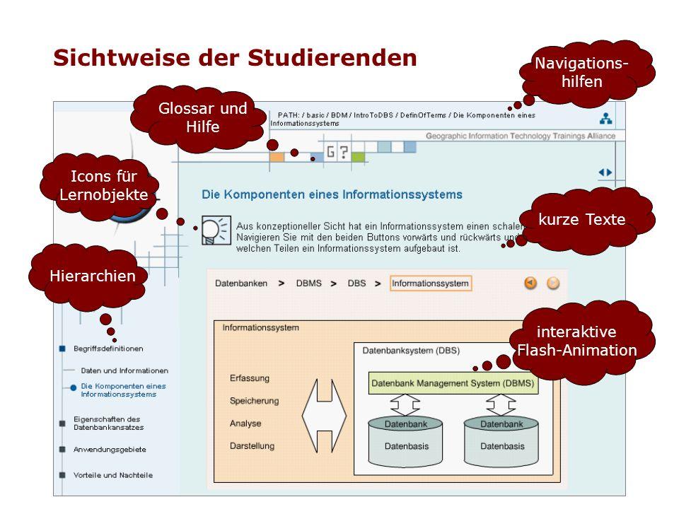Sichtweise der Studierenden Navigations- hilfen kurze Texte Glossar und Hilfe interaktive Flash-Animation Hierarchien Icons für Lernobjekte