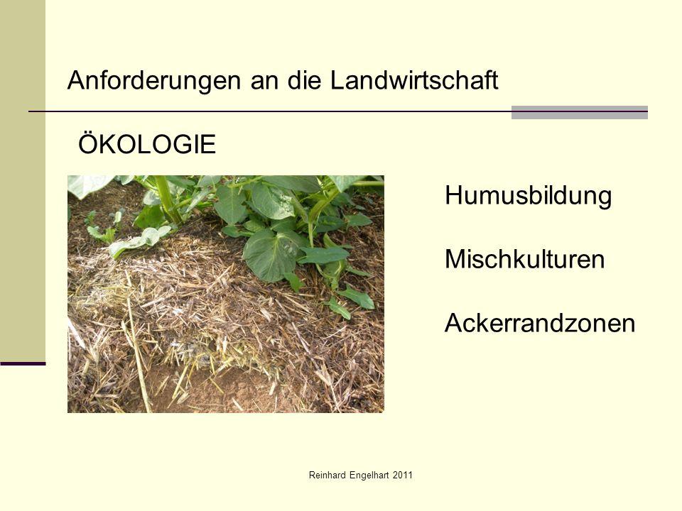 Reinhard Engelhart 2011 Anforderungen an die Landwirtschaft ÖKOLOGIE Humusbildung Mischkulturen Ackerrandzonen