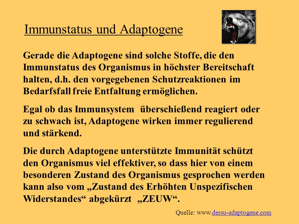 Immunstatus und Adaptogene Gerade die Adaptogene sind solche Stoffe, die den Immunstatus des Organismus in höchster Bereitschaft halten, d.h. den vorg