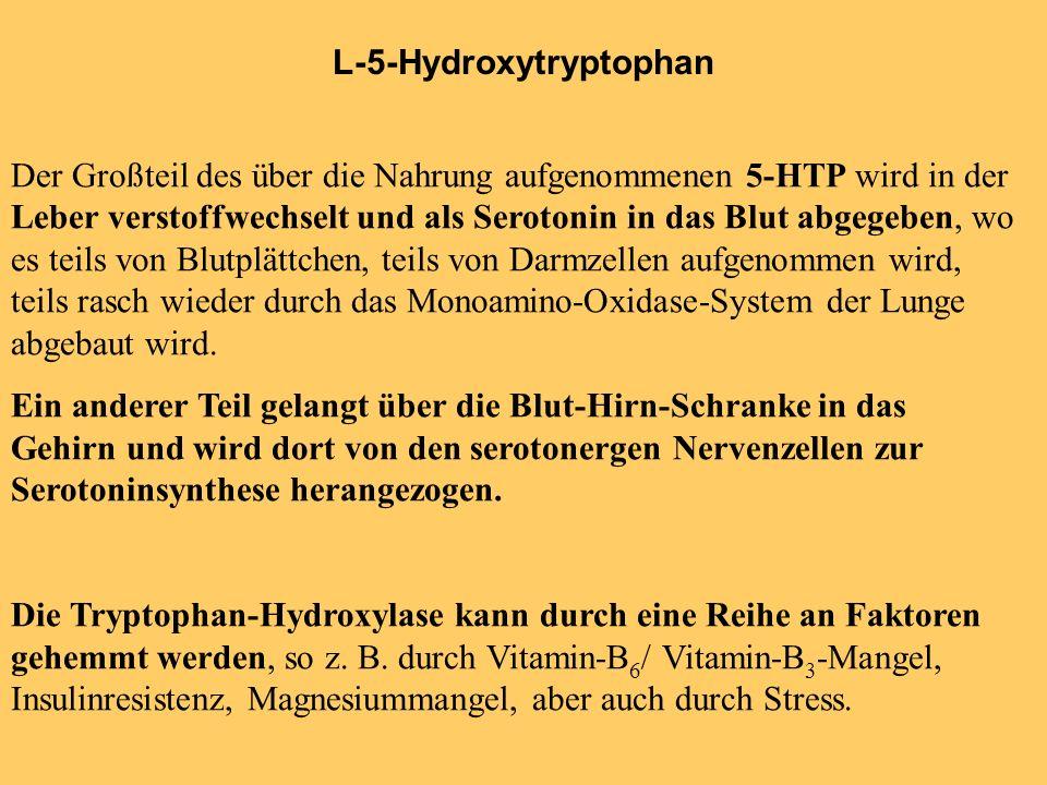 L-5-Hydroxytryptophan Der Großteil des über die Nahrung aufgenommenen 5-HTP wird in der Leber verstoffwechselt und als Serotonin in das Blut abgegeben