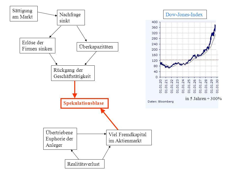 Sättigung am Markt Nachfrage sinkt Erlöse der Firmen sinken Überkapazitäten Übertriebene Euphorie der Anleger Viel Fremdkapital im Aktienmarkt Realitä