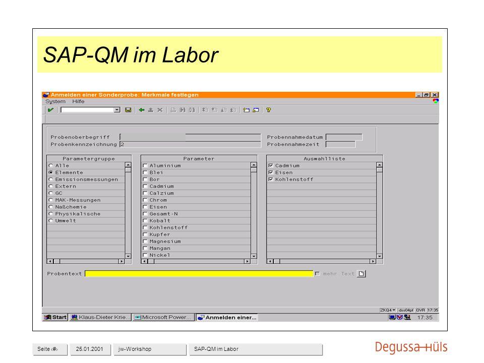 Seite 825.01.2001jw-WorkshopSAP-QM im Labor