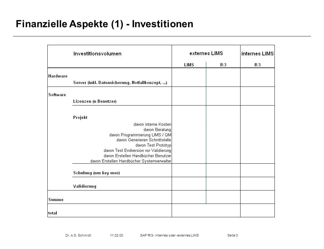 Seite 311.02.00Dr. A.S. SchmidtSAP R/3- internes oder -externes LIMS Finanzielle Aspekte (1) - Investitionen