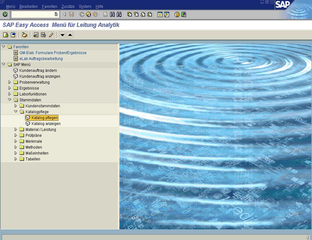 Dr. Jochen Winkler jw http://www.jwconsulting.deSeite 2127.03.2003 Erfahrungen im eLab-Projekt – Pflege im SAP