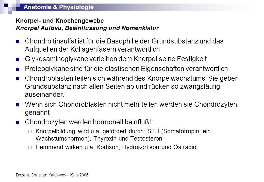 Anatomie & Physiologie Dozent: Christian Kaldewey – Kurs 2006 Chondroitinsulfat ist für die Basophilie der Grundsubstanz und das Aufquellen der Kollag