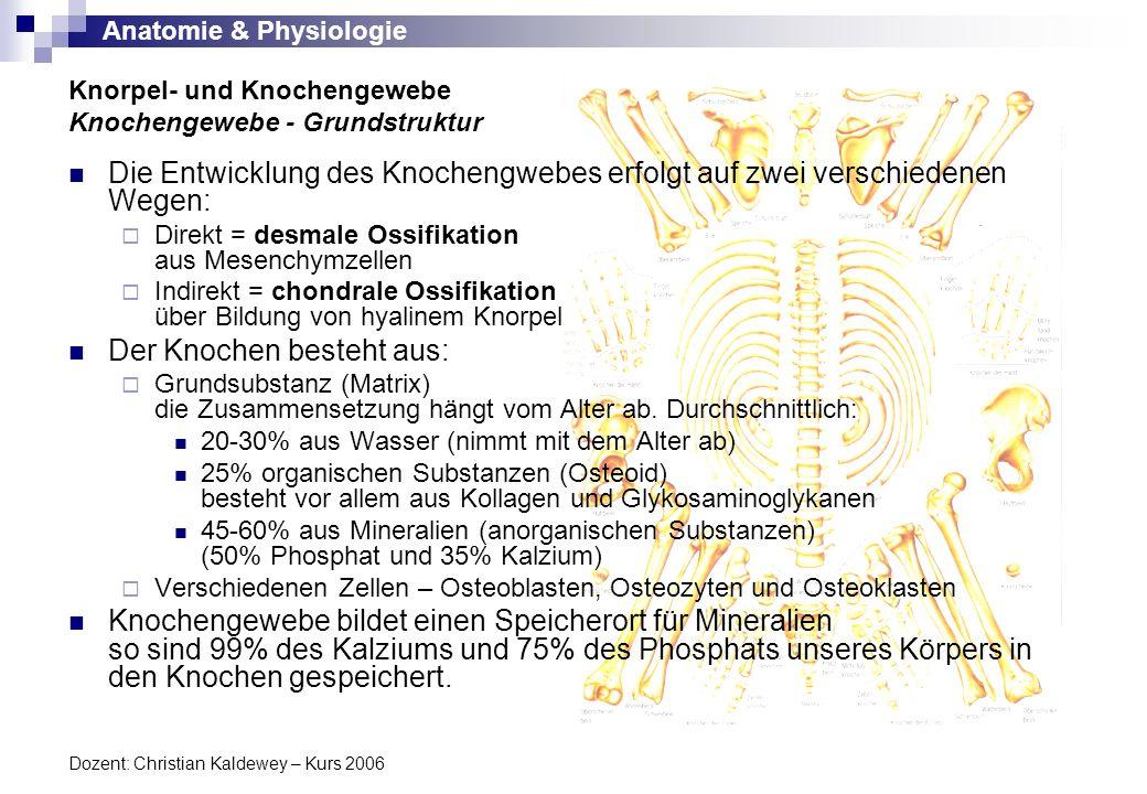 Anatomie & Physiologie Dozent: Christian Kaldewey – Kurs 2006 Die Entwicklung des Knochengwebes erfolgt auf zwei verschiedenen Wegen: Direkt = desmale