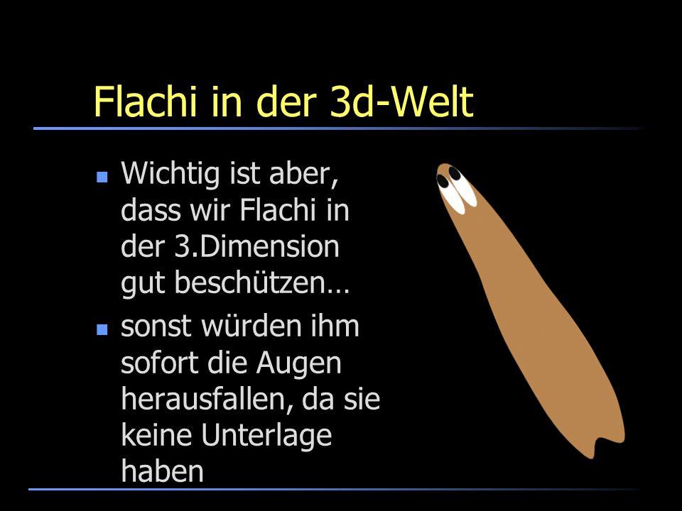 Flachi in der 3d-Welt Wichtig ist aber, dass wir Flachi in der 3.Dimension gut beschützen… sonst würden ihm sofort die Augen herausfallen, da sie kein