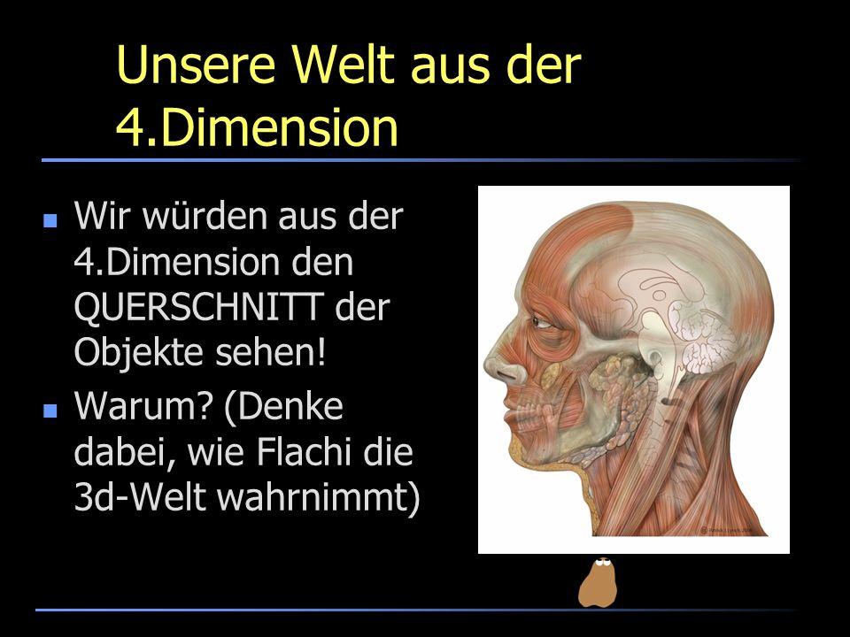 Unsere Welt aus der 4.Dimension Wir würden aus der 4.Dimension den QUERSCHNITT der Objekte sehen! Warum? (Denke dabei, wie Flachi die 3d-Welt wahrnimm