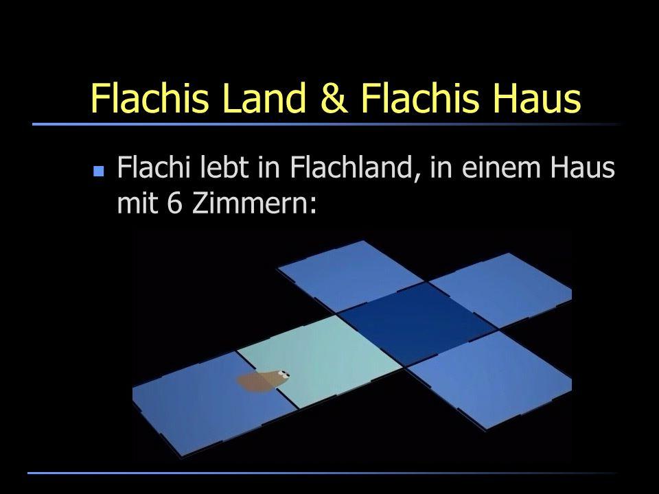 Flachis Sicht der Welt So wie wir Menschen eigentlich nur Flächen sehen (darum haben wir im Kino und beim Fernsehen so einen lebensechten Eindruck) So sieht Flachi nur Linien:
