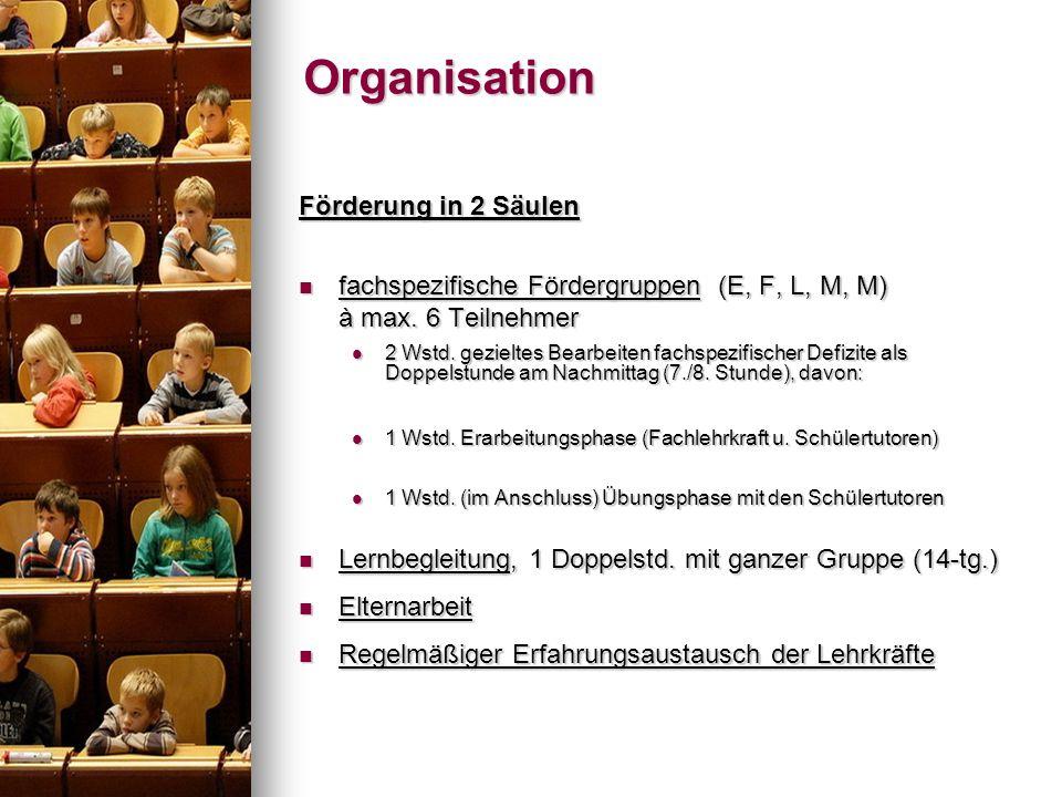 Förderung in 2 Säulen fachspezifische Fördergruppen (E, F, L, M, M) à max. 6 Teilnehmer fachspezifische Fördergruppen (E, F, L, M, M) à max. 6 Teilneh