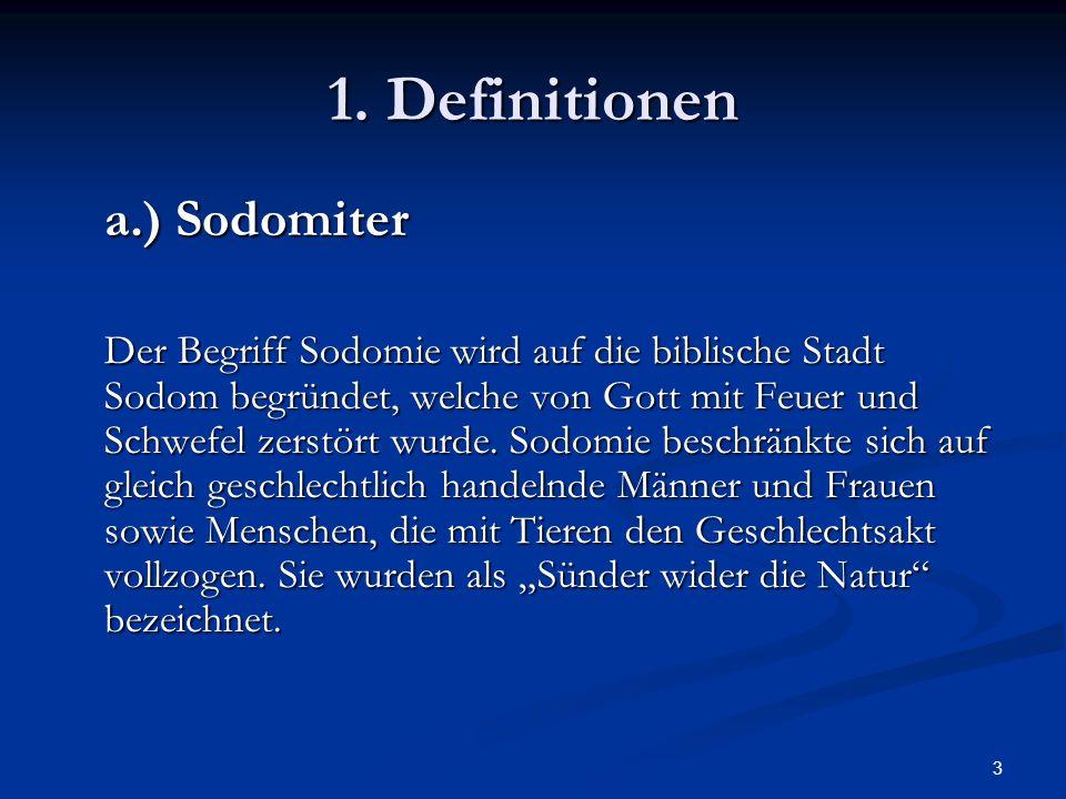 3 1. Definitionen a.) Sodomiter Der Begriff Sodomie wird auf die biblische Stadt Sodom begründet, welche von Gott mit Feuer und Schwefel zerstört wurd