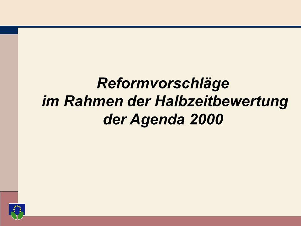 Reformvorschläge im Rahmen der Halbzeitbewertung der Agenda 2000