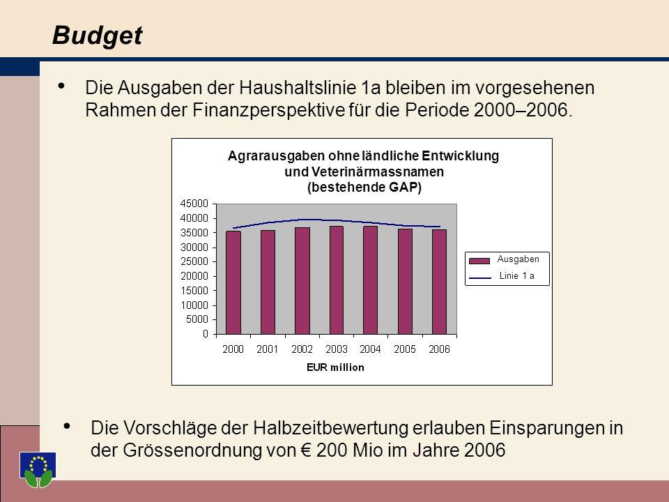 Budget Die Ausgaben der Haushaltslinie 1a bleiben im vorgesehenen Rahmen der Finanzperspektive für die Periode 2000–2006.