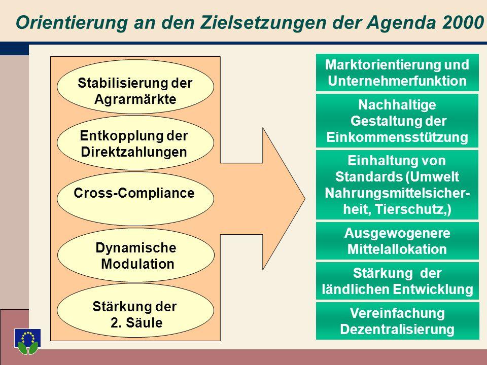 Die Halbzeitbewertung 2002 Die Vorschläge folgen der Logik des Reformprozesses seit 1992 Die Vorschläge respektieren die in Berlin festgesetzte Budget-Obergrenze Die Vorschläge orientieren sich strikt an den in der AGENDA 2000 formulierten Zielsetzungen