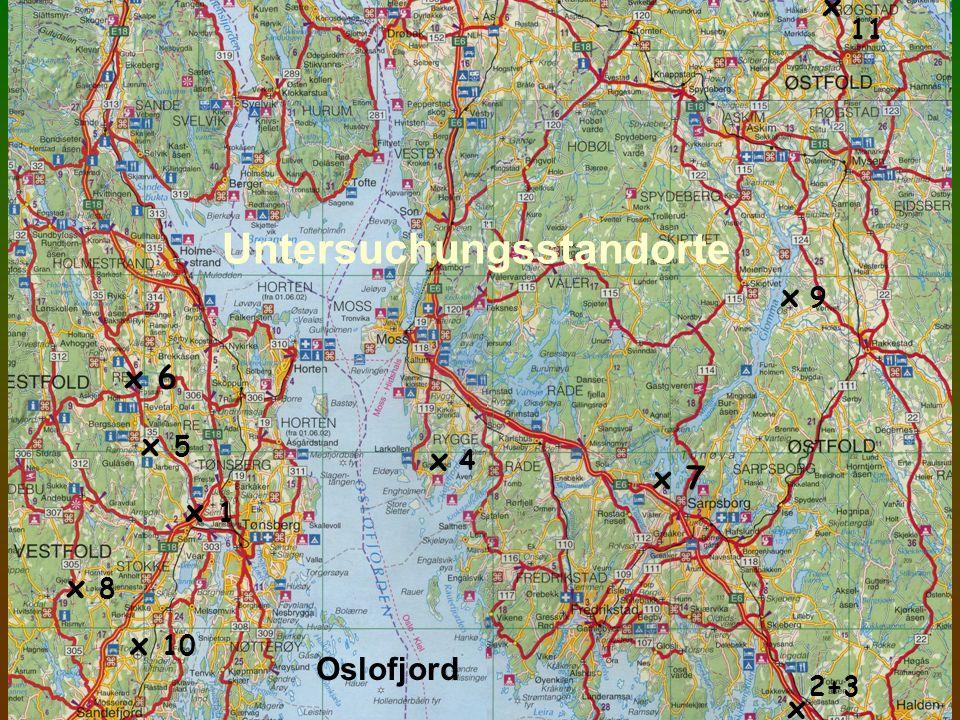 Standort 11: 11 100 Jahre alter Boden: mäßig podsolige Pseudogley-Fahlerde nach WRB: Cutanic protospodic epistagnic Albeluvisol