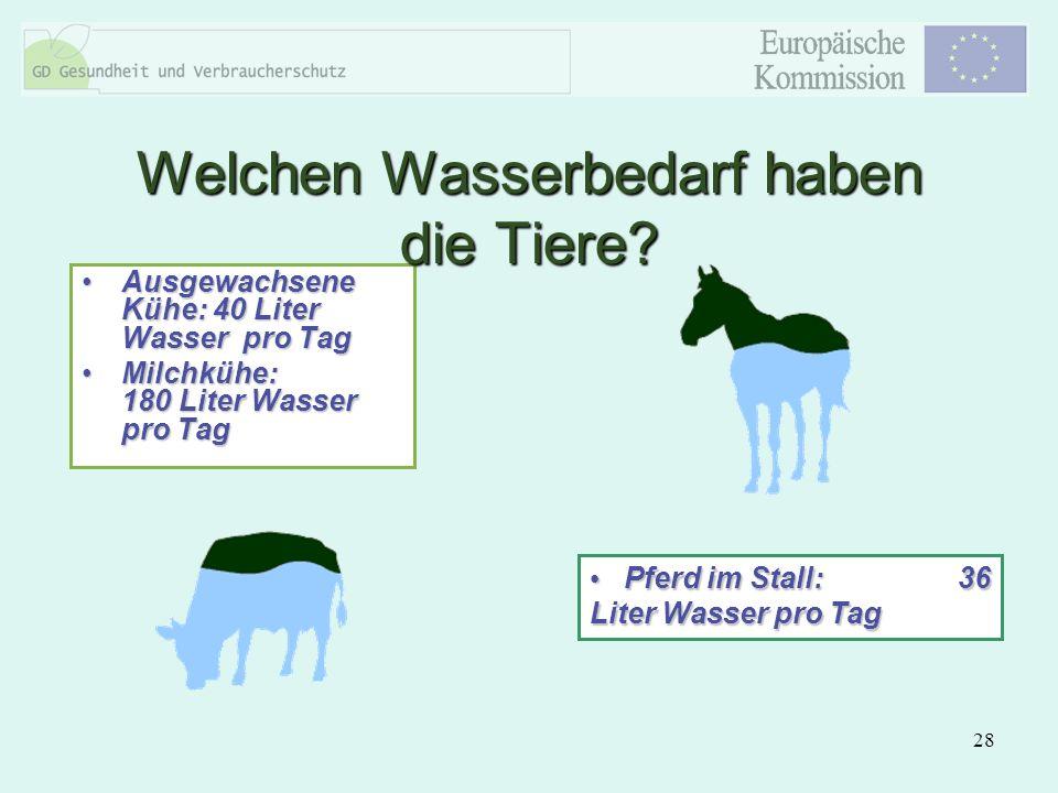 28 Ausgewachsene Kühe: 40 Liter Wasser pro TagAusgewachsene Kühe: 40 Liter Wasser pro Tag Milchkühe: 180 Liter Wasser pro TagMilchkühe: 180 Liter Wass