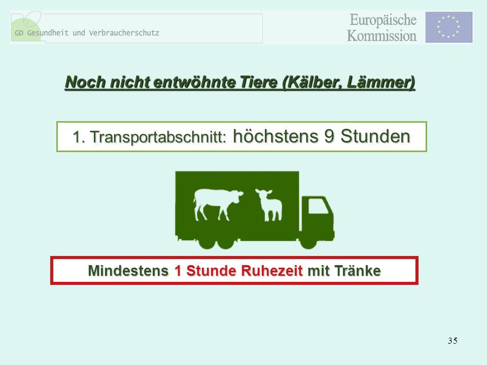35 Noch nicht entwöhnte Tiere (Kälber, Lämmer) 1. Transportabschnitt: höchstens 9 Stunden Mindestens 1 Stunde Ruhezeit mit Tränke