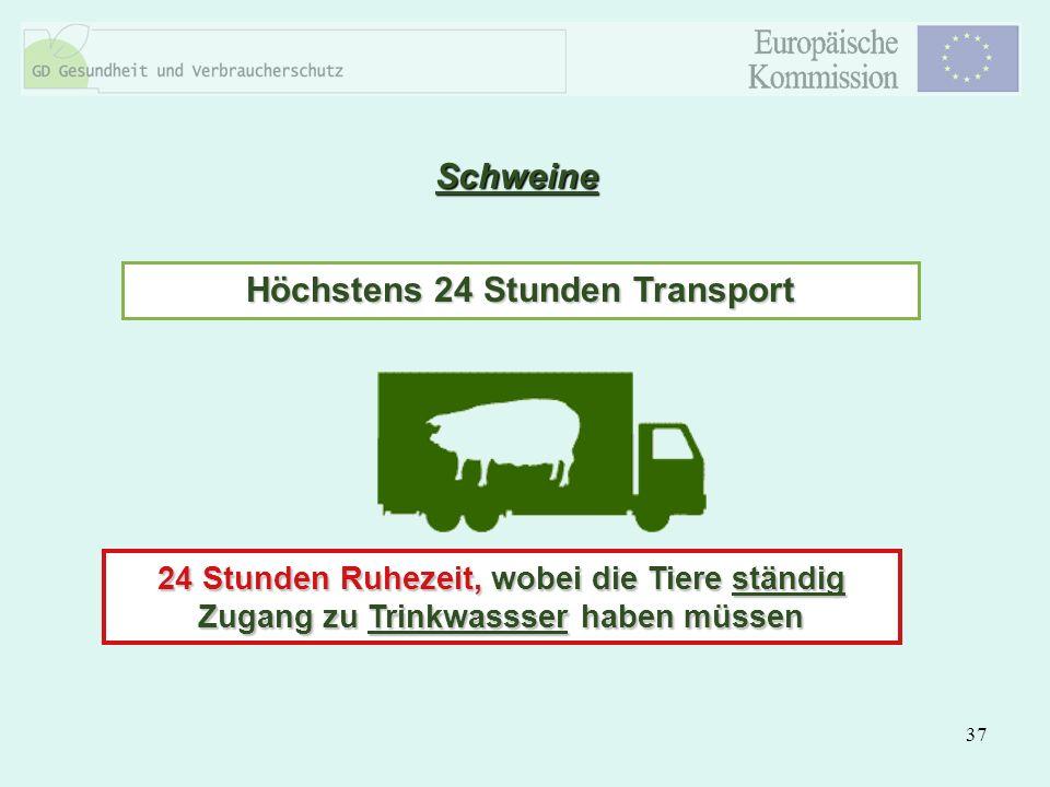 37 Schweine Höchstens 24 Stunden Transport 24 Stunden Ruhezeit, wobei die Tiere ständig Zugang zu Trinkwassser haben müssen