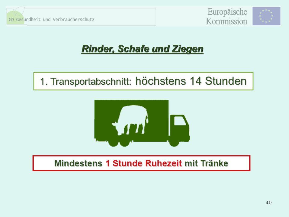 40 Rinder, Schafe und Ziegen 1. Transportabschnitt: höchstens 14 Stunden Mindestens 1 Stunde Ruhezeit mit Tränke