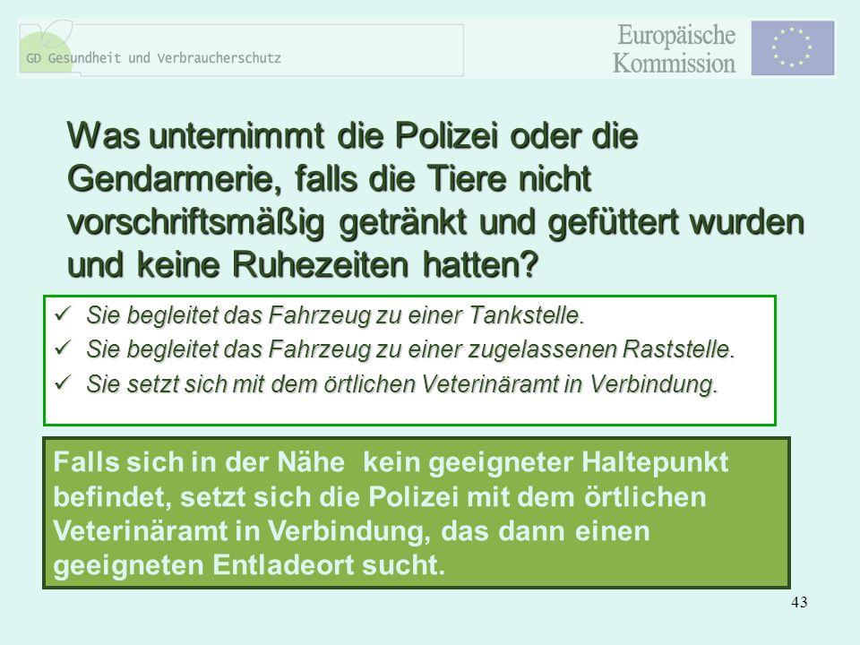 43 Was unternimmt die Polizei oder die Gendarmerie, falls die Tiere nicht vorschriftsmäßig getränkt und gefüttert wurden und keine Ruhezeiten hatten?