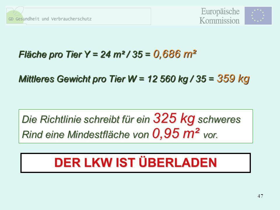 47 DER LKW IST ÜBERLADEN Die Richtlinie schreibt für ein 325 kg schweres Rind eine Mindestfläche von 0,95 m² vor. Fläche pro Tier Y = 24 m² / 35 = 0,6
