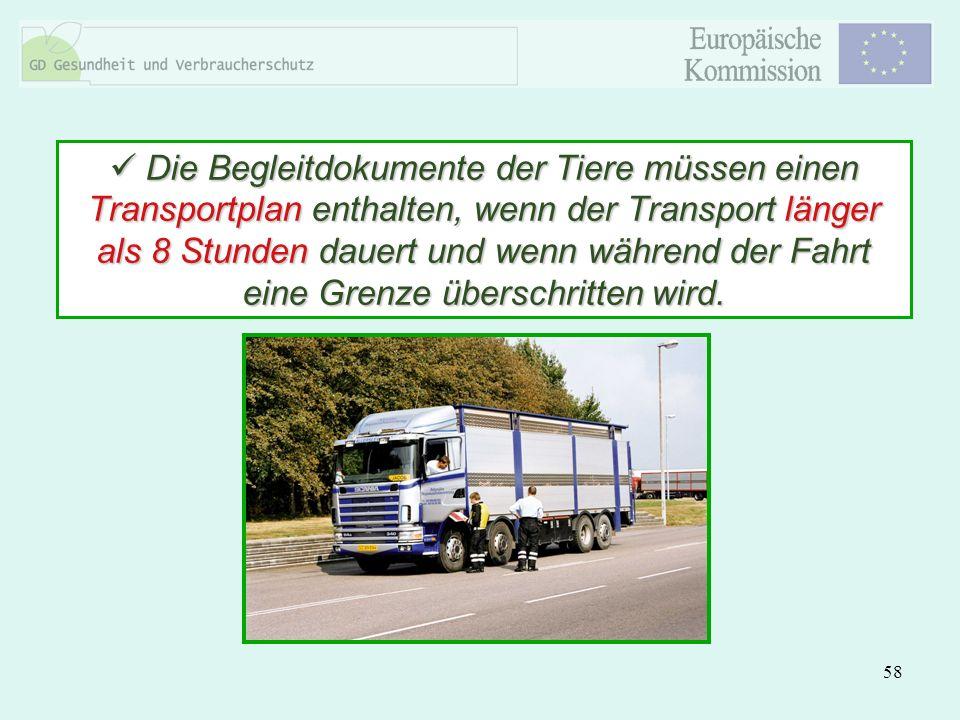 58 Die Begleitdokumente der Tiere müssen einen Transportplan enthalten, wenn der Transport länger als 8 Stunden dauert und wenn während der Fahrt eine
