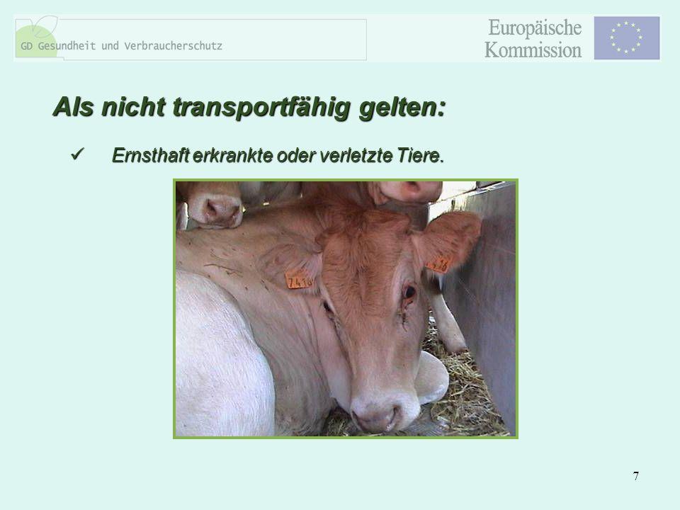 7 Ernsthaft erkrankte oder verletzte Tiere. Ernsthaft erkrankte oder verletzte Tiere. Als nicht transportfähig gelten: