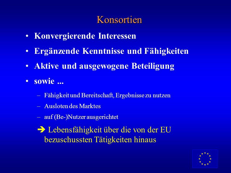Wer kann teilnehmen? Länder 15 EU-Mitgliedstaaten EFTA : Island, Liechtenstein, Norwegen Drittländer: je nach Vereinbarung Organisationen Öffentliche