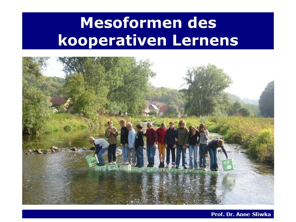 Prof. Dr. Anne Sliwka Mesoformen des kooperativen Lernens