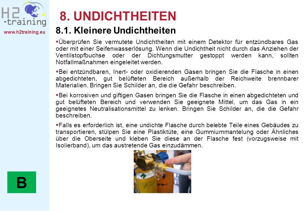 www.h2training.eu 8. UNDICHTHEITEN 8.1. Kleinere Undichtheiten Überprüfen Sie vermutete Undichtheiten mit einem Detektor für entzündbares Gas oder mit