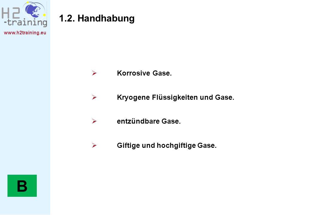 www.h2training.eu Korrosive Gase. Kryogene Flüssigkeiten und Gase. entzündbare Gase. Giftige und hochgiftige Gase. 1.2. Handhabung B