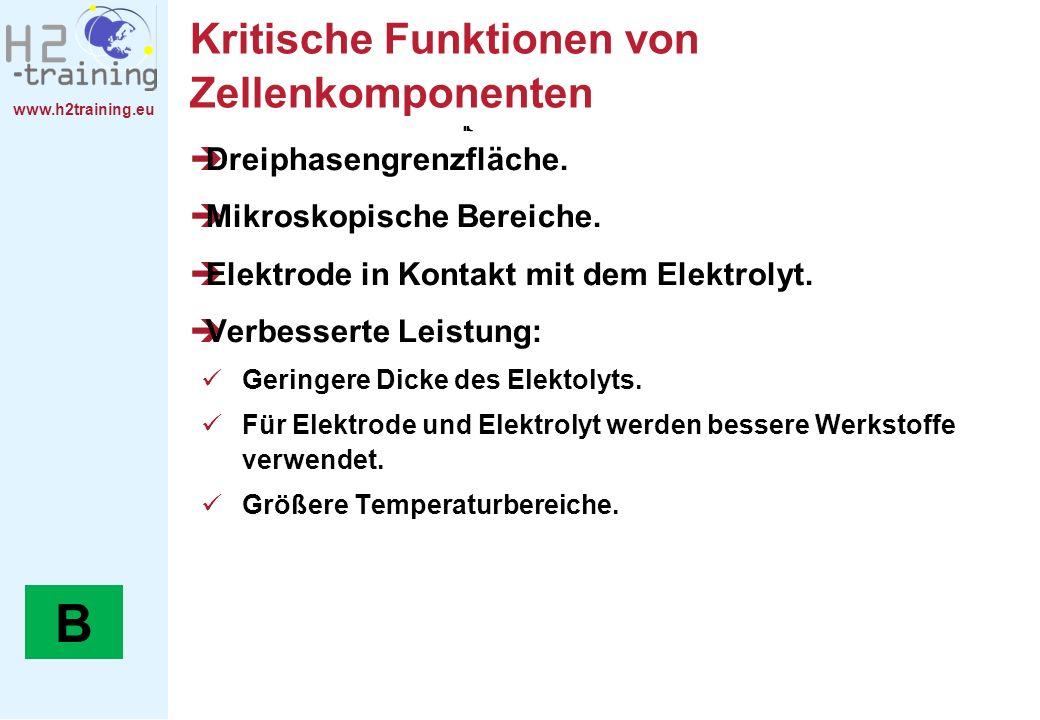 www.h2training.eu Kritische Funktionen von Zellenkomponenten Dreiphasengrenzfläche. Mikroskopische Bereiche. Elektrode in Kontakt mit dem Elektrolyt.