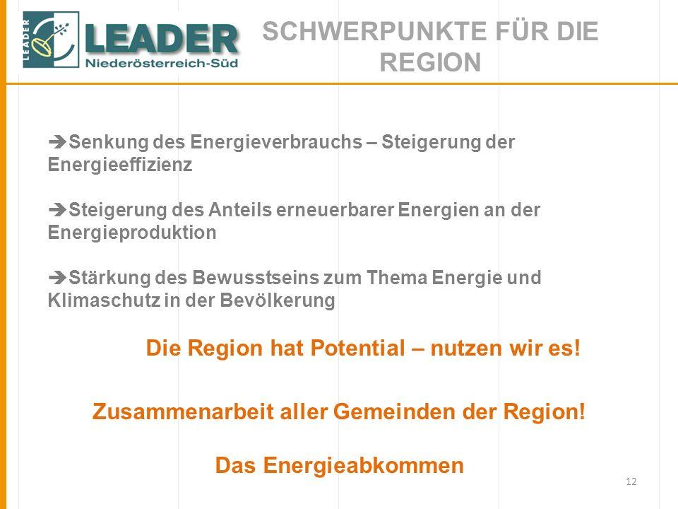 12 SCHWERPUNKTE FÜR DIE REGION Senkung des Energieverbrauchs – Steigerung der Energieeffizienz Steigerung des Anteils erneuerbarer Energien an der Ene