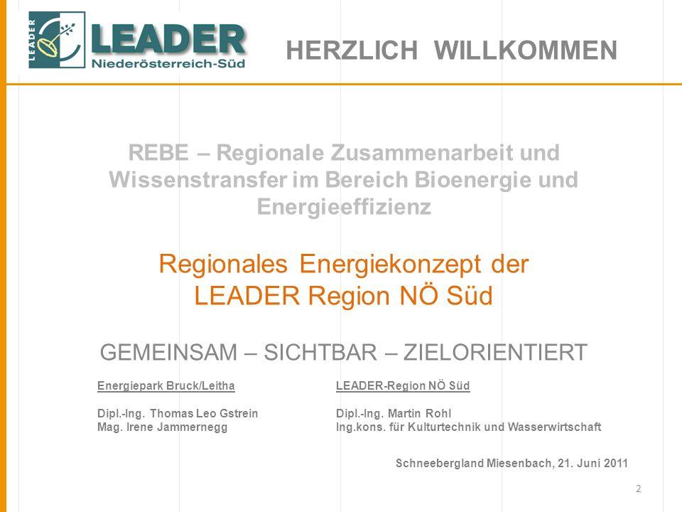 2 REBE – Regionale Zusammenarbeit und Wissenstransfer im Bereich Bioenergie und Energieeffizienz Regionales Energiekonzept der LEADER Region NÖ Süd GE