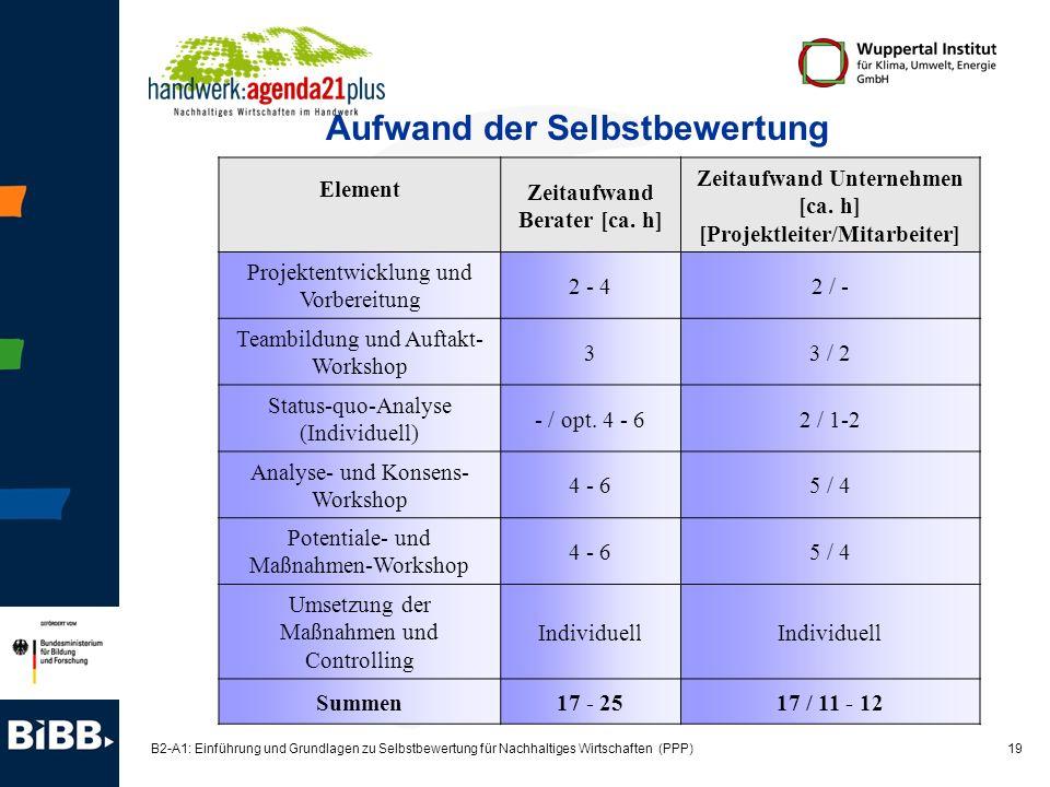 19 B2-A1: Einführung und Grundlagen zu Selbstbewertung für Nachhaltiges Wirtschaften (PPP) Aufwand der Selbstbewertung Element Zeitaufwand Berater [ca