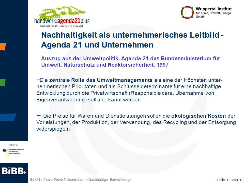 B1-A1: PowerPoint-Präsentation »Nachhaltige Entwicklung« Nachhaltigkeit als unternehmerisches Leitbild - Agenda 21 und Unternehmen Die zentrale Rolle