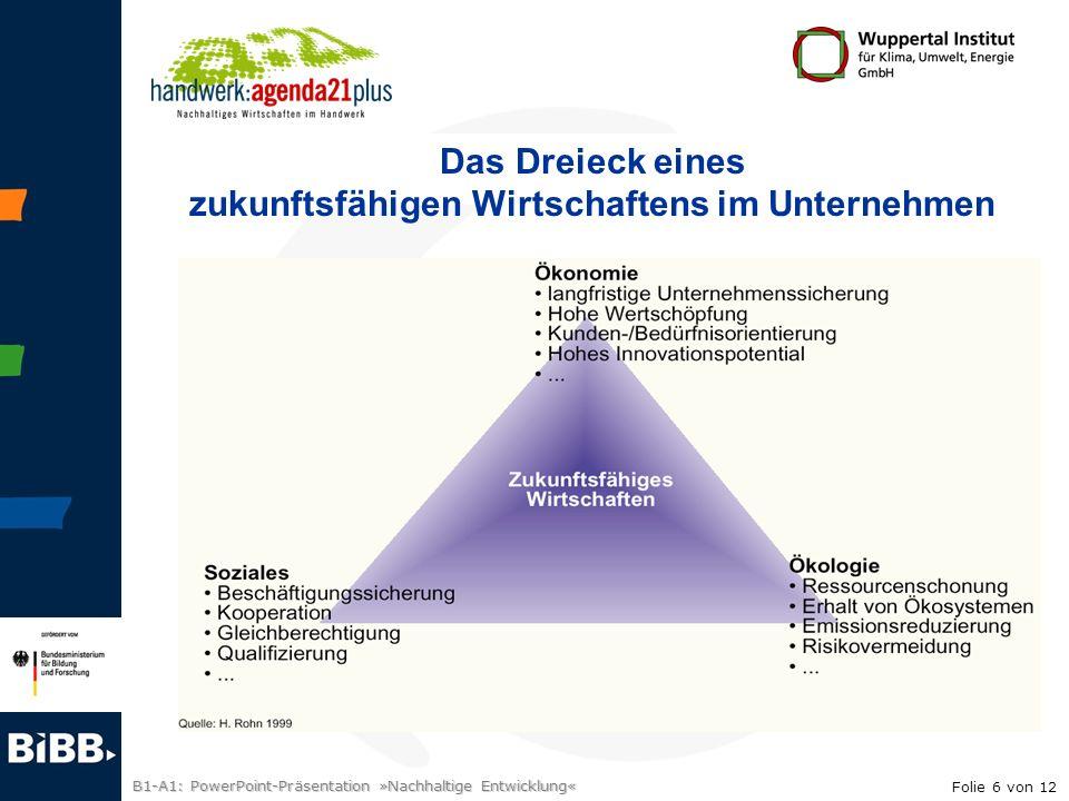 B1-A1: PowerPoint-Präsentation »Nachhaltige Entwicklung« Das Dreieck eines zukunftsfähigen Wirtschaftens im Unternehmen Folie 6 von 12